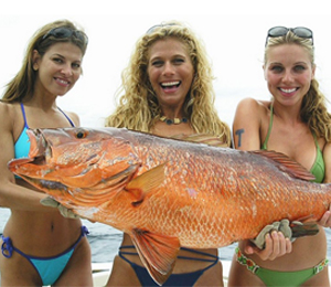 Key West Red Snapper