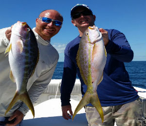 Key West Catch of the Week - November 3