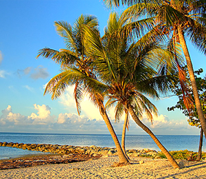 Key West Top Guides Cancellation Policy